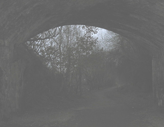 The grey dawn beyond the tunnel