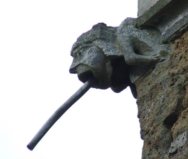 Gargoyle on Wootton Church