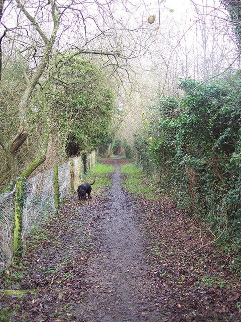 Footpath to Flamstone Street