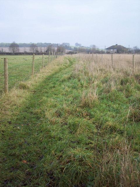 Revels Field