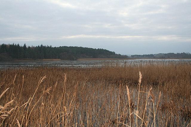 Looking southwest along Spynie Loch.