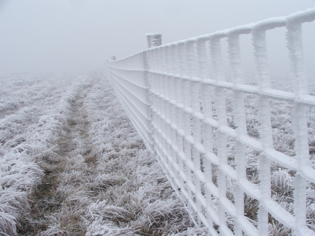 Frozen Fence on Lovely Seat.