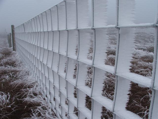 Frozen Fence.