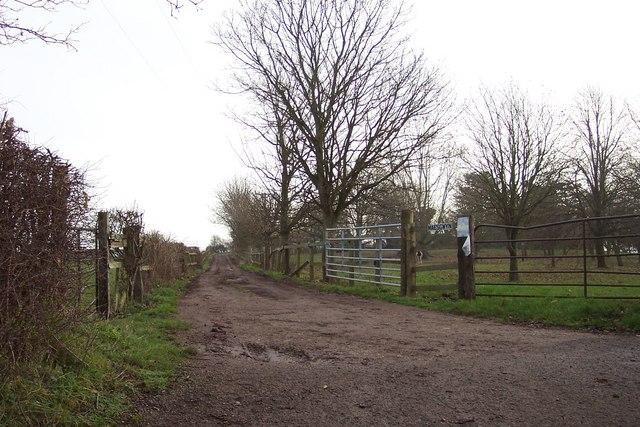 Track to Maes-Gwyn
