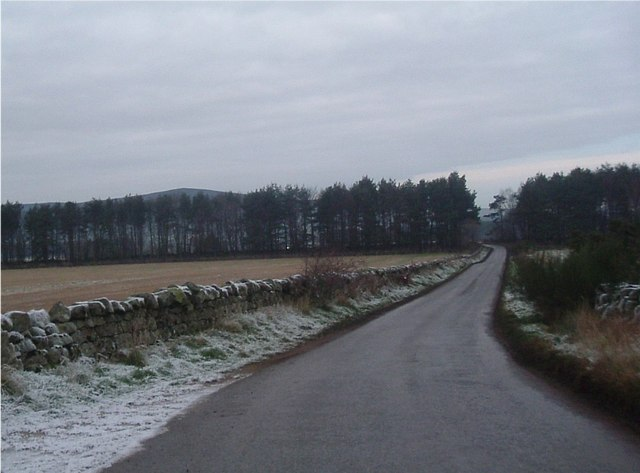 Brucklebog Road