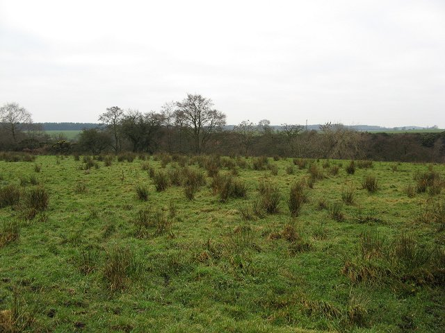 Wet land, Greenbraehead