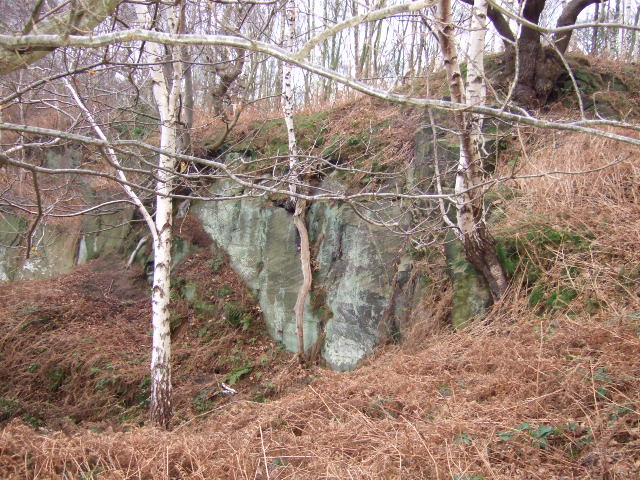 Small quarry at Horsley Castle.