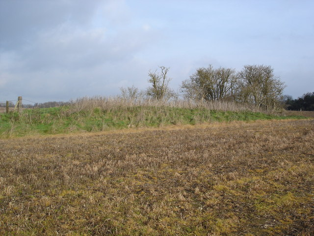 Remains of Ancient Village on Chettle Down