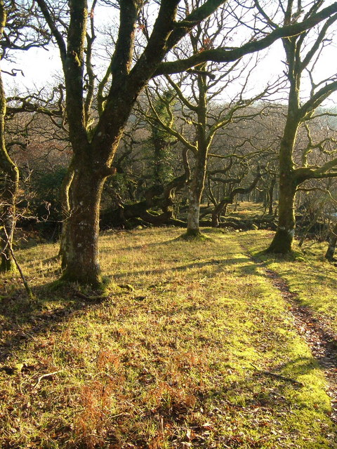 Path by the Tavy
