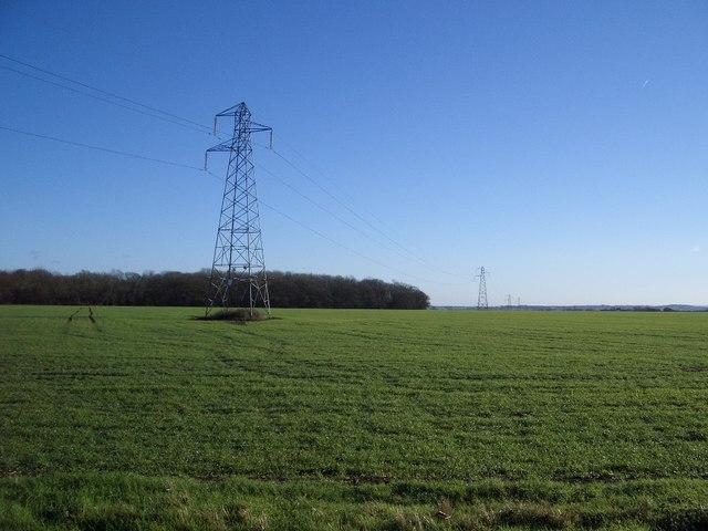 Electricity Pylons near Harrold Park Farm