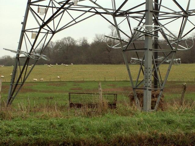 Farmland through a pylon