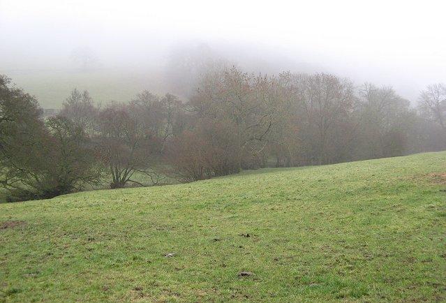 Lawn Brook