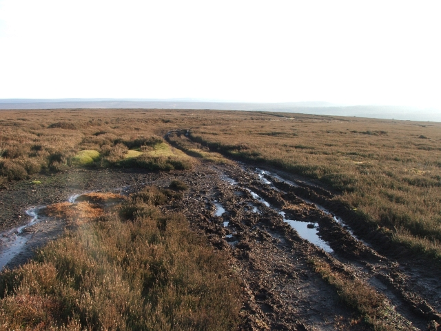 Footpath across Wheeldale Moor.