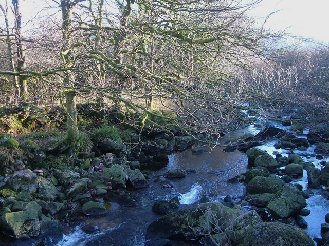 River Tavy at Standon Steps