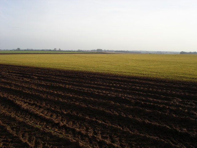 Farmland to the east of Tresham