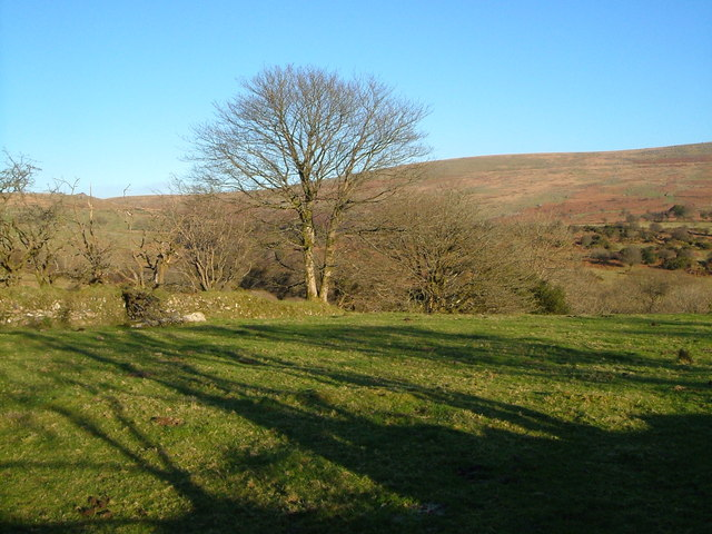 Towards the Tavy valley at Standon Steps