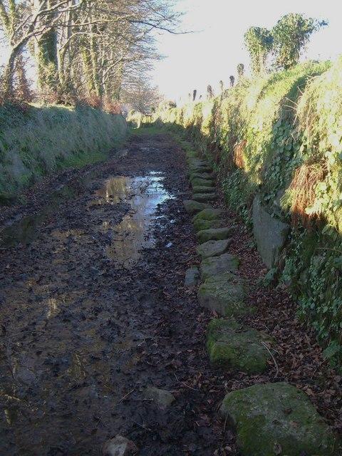 Muddy path and helpful stones