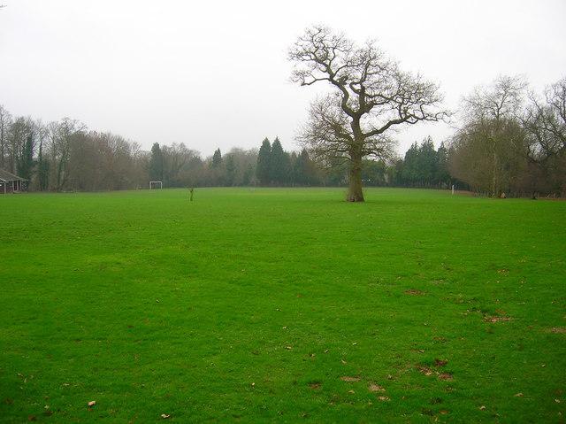 Iden Recreation Ground