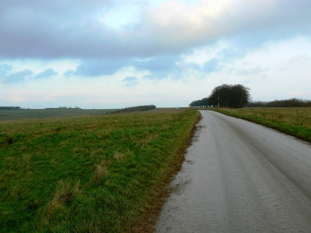 Road leading in general direction of West Lavington Down