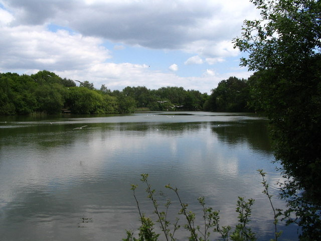 Creekmoor Ponds