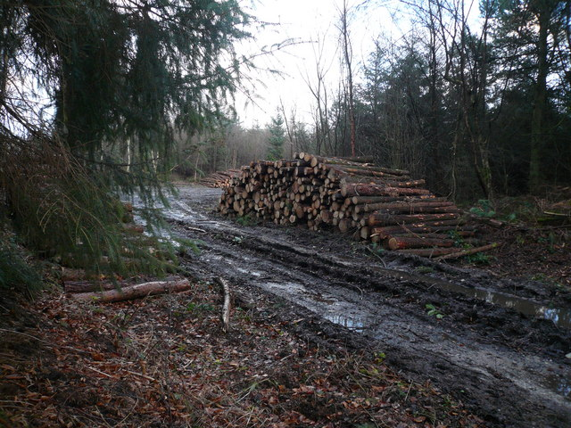 Logging Operation