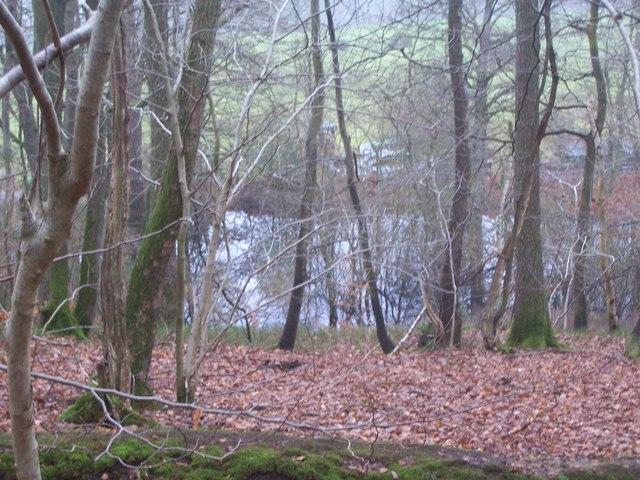 Black Pond from Rake Hanger