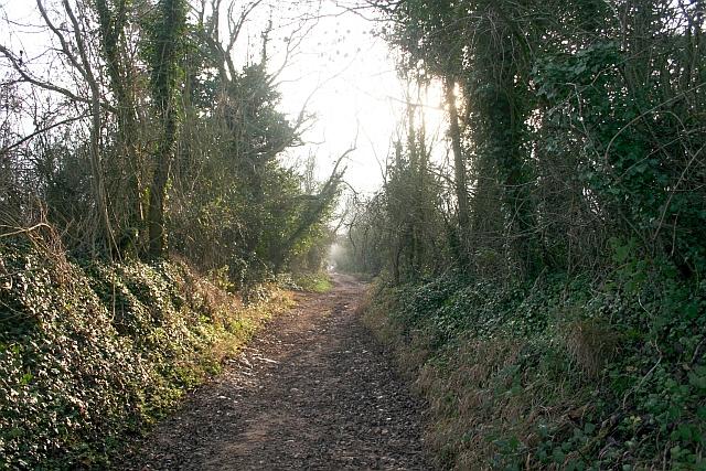 Lane to Westmancote