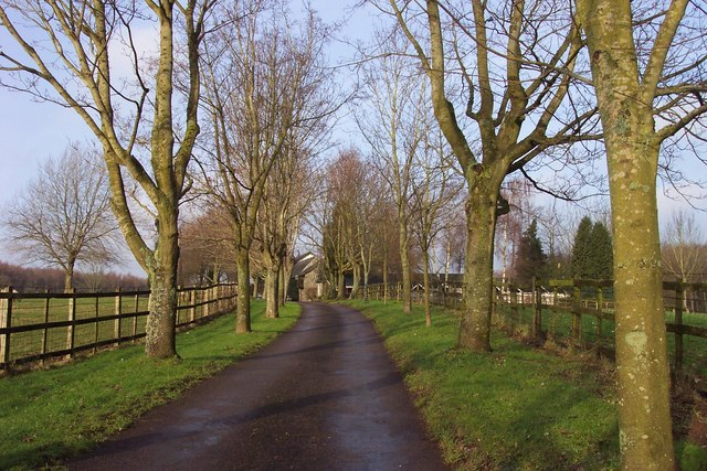 Avenue to Rossfield