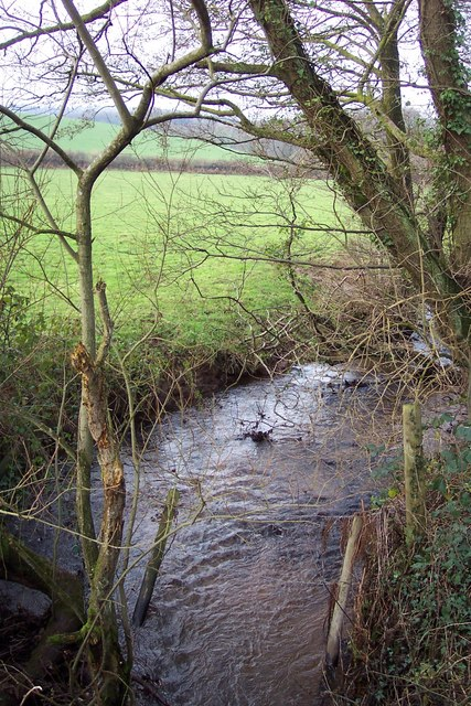 Glyn Brook at Pont Faen