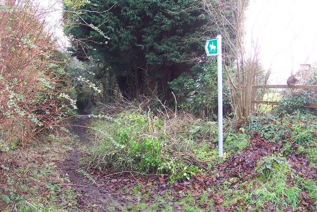 Bridleway by Upper Argoed Farm