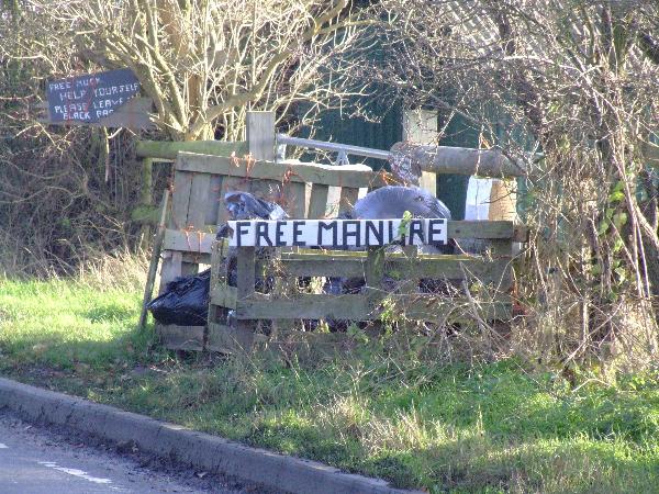 Free Manure!