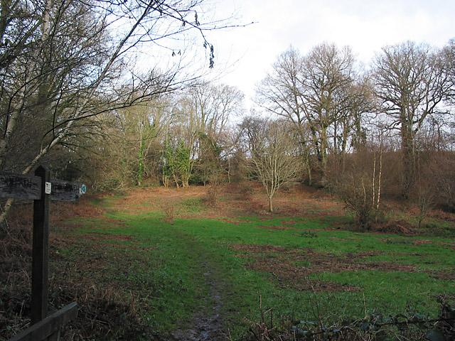 The Test Way west of Roke Manor, nr Romsey
