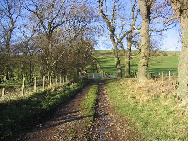 Track at Howtel Farm