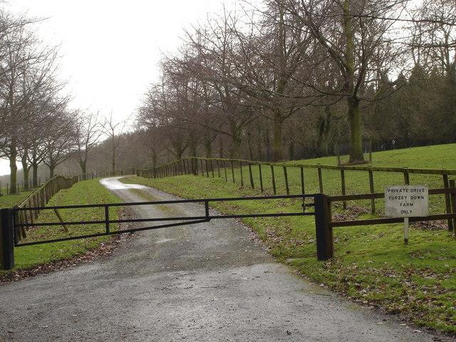 The Lane to Furzey Down Farm