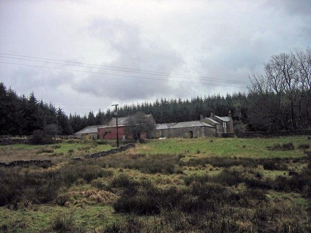 Hindleysteel Farm, Wark Forest near Hopealone