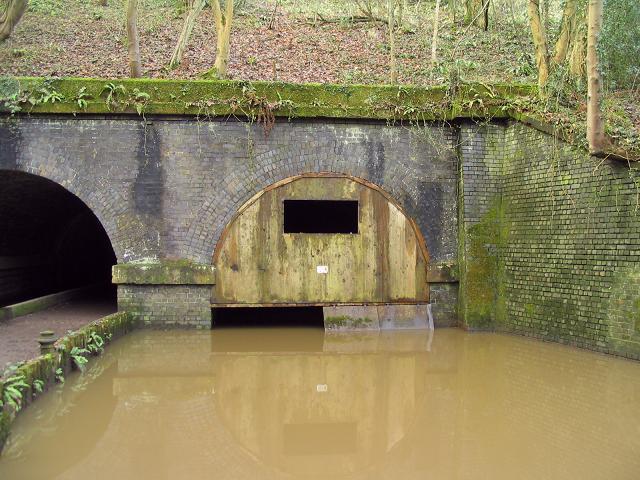 Man-made bat cave at Dibbinsdale