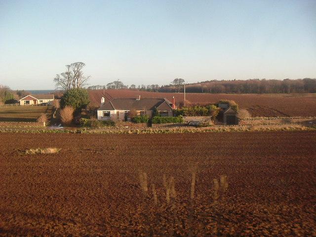 Semi-detached Cottages, Newtonlees
