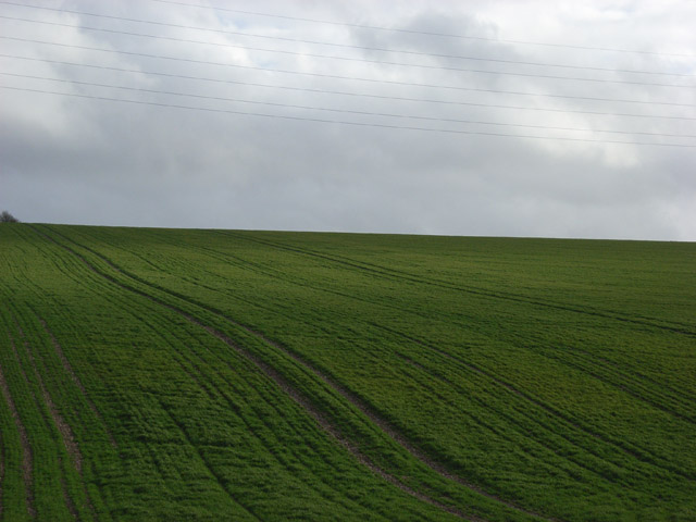 Farmland and power lines near Hare Warren