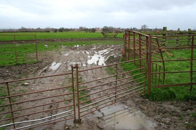 Farmland near Long Bennington