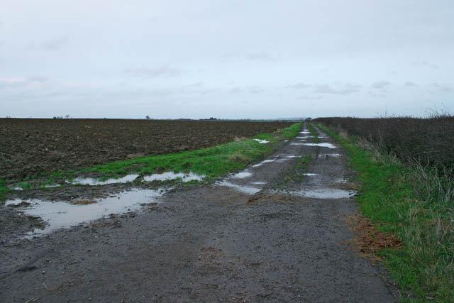 Farm track at Westborough Lodge
