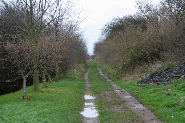 Clensey Lane, Doddington Littlegate