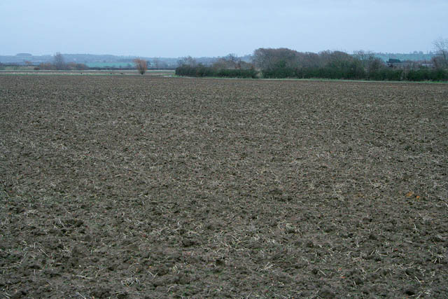 Ploughed field at Gorse Lodge