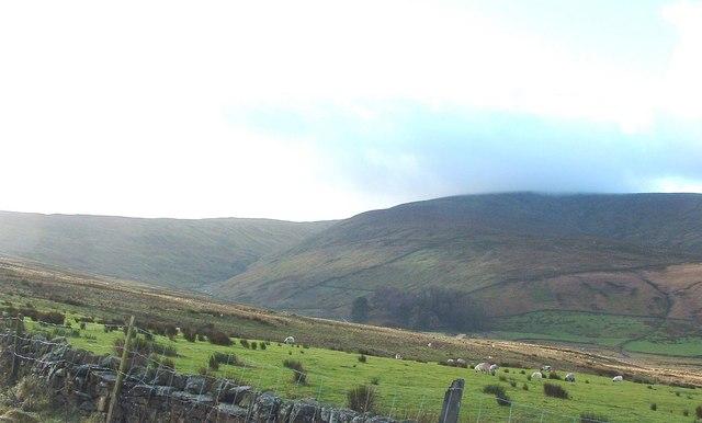 West Duerley Pasture, Sleddale, near Hawes