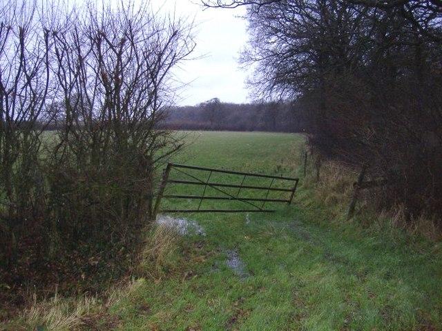 Farmland next to Ravensroost wood.