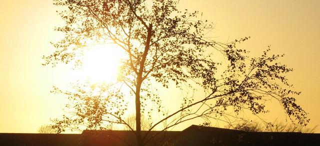 The setting sun over Ysgol Brynrefail