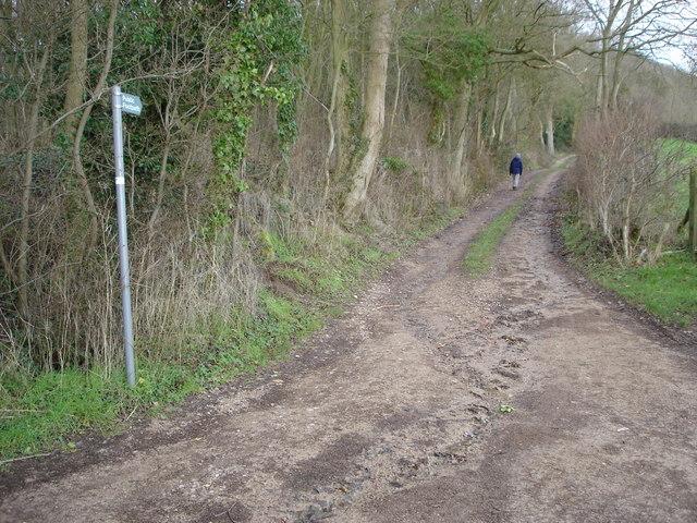 Footpath to Howler's Heath