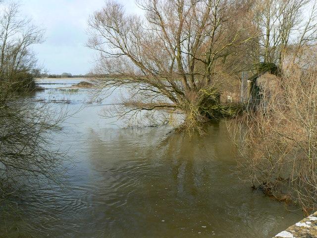 River Thames, upstream of Hannington Bridge