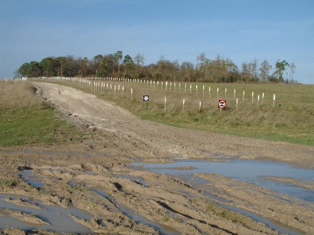 Track and byway on Salisbury Plain