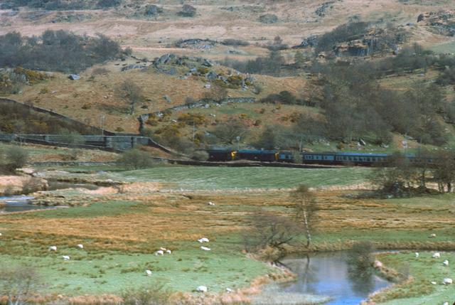 Excursion near Pont Rufeinig