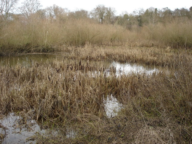 Nature reserve, The Mythe